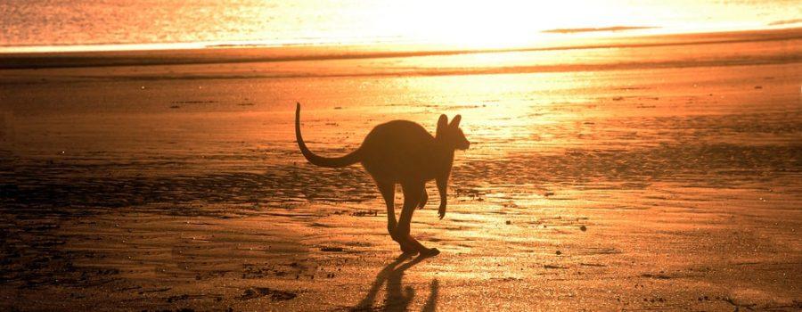 2021 Australian Visa Updates